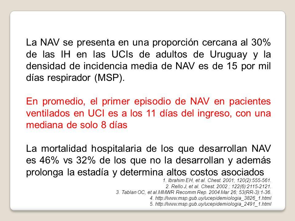 La NAV se presenta en una proporción cercana al 30% de las IH en las UCIs de adultos de Uruguay y la densidad de incidencia media de NAV es de 15 por mil días respirador (MSP).