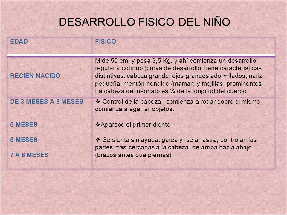 DESARROLLO FISICO DEL NIÑO