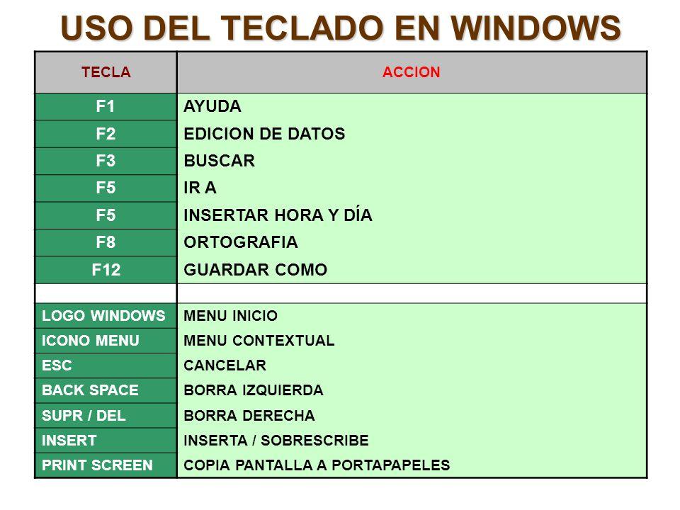 USO DEL TECLADO EN WINDOWS
