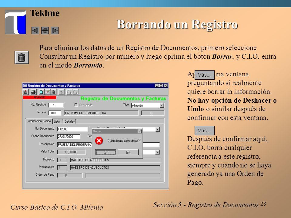 Borrando un Registro Tekhne