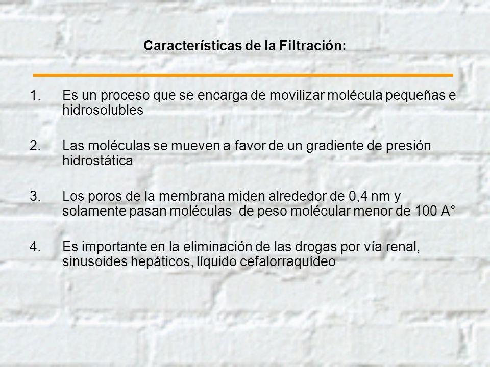 Características de la Filtración: