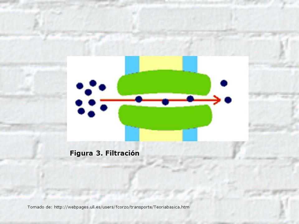 Figura 3. Filtración Tomado de: http://webpages.ull.es/users/fcorzo/transporte/Teoriabasica.htm