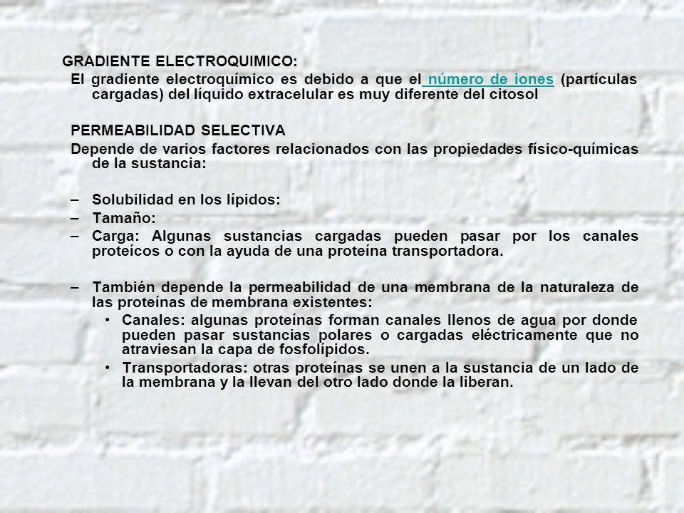 GRADIENTE ELECTROQUIMICO: