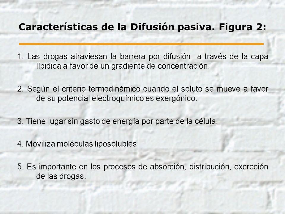 Características de la Difusión pasiva. Figura 2: