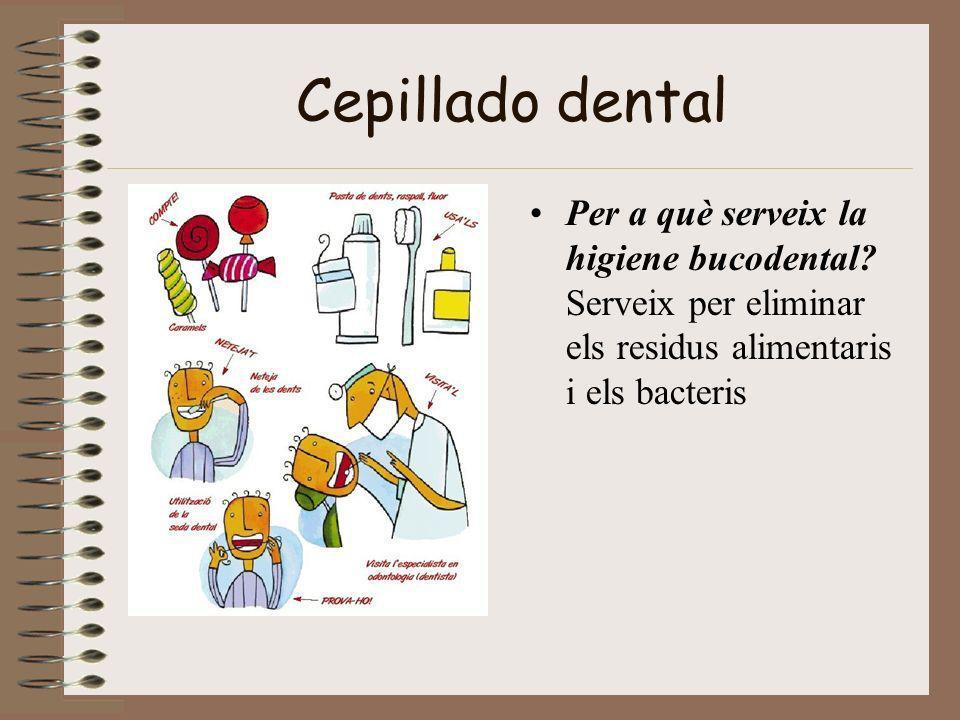 Cepillado dental Per a què serveix la higiene bucodental.