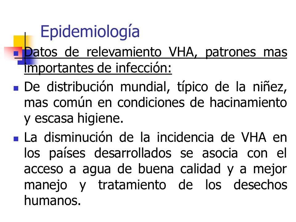 Epidemiología Datos de relevamiento VHA, patrones mas importantes de infección: