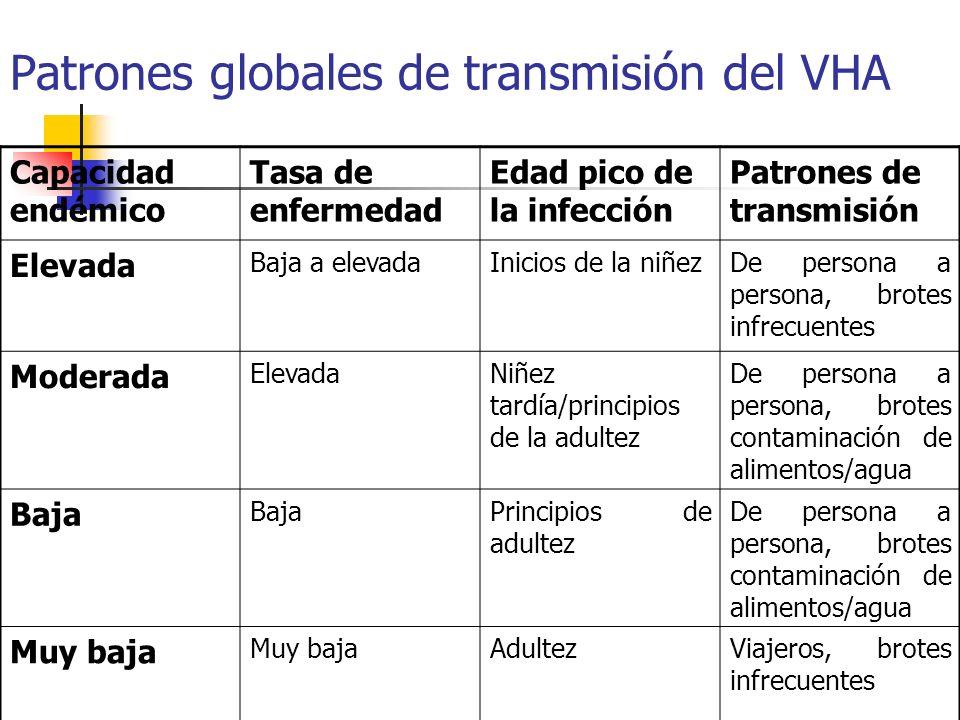 Patrones globales de transmisión del VHA