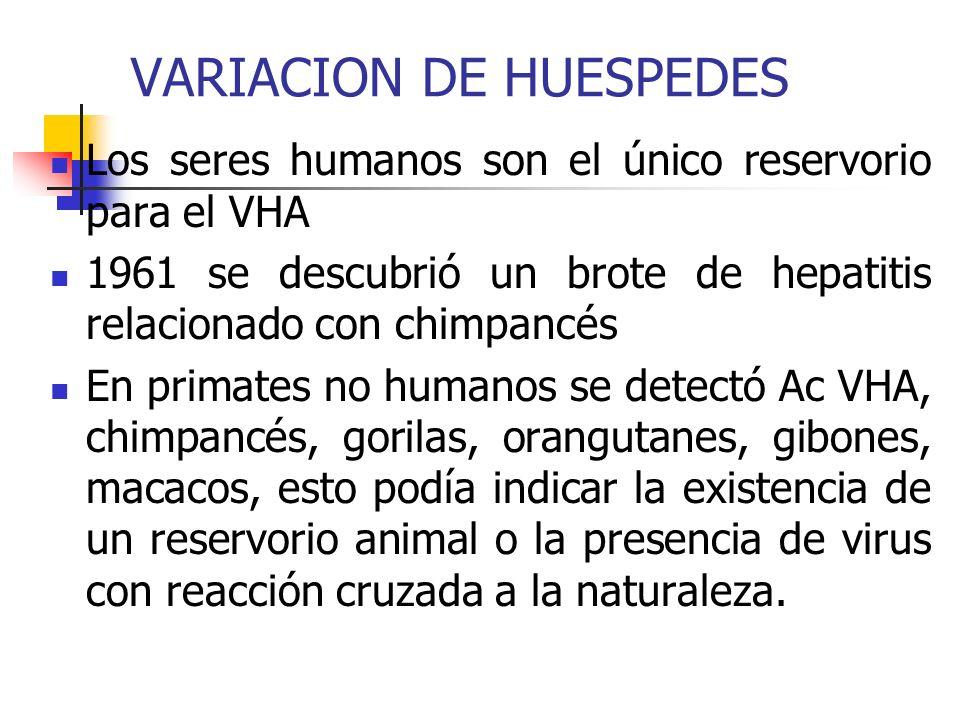 VARIACION DE HUESPEDES