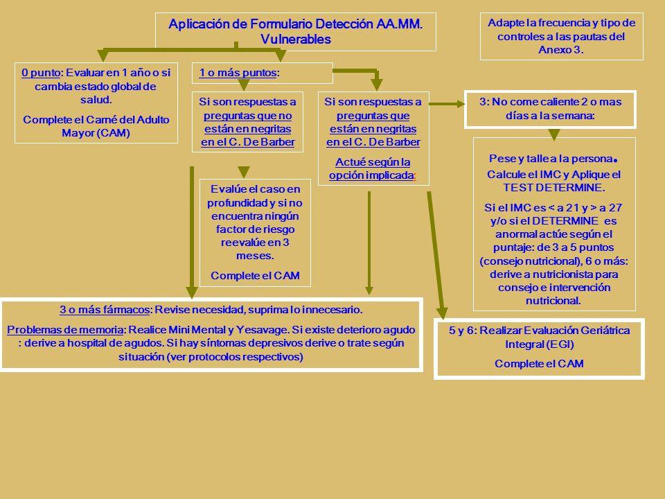 Aplicación de Formulario Detección AA.MM. Vulnerables