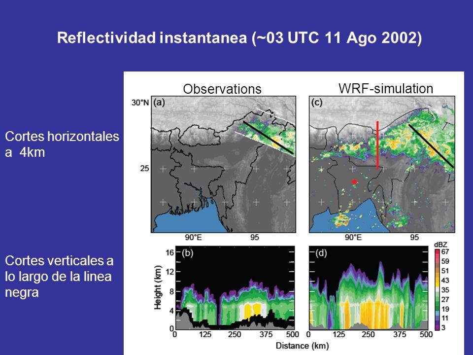 Reflectividad instantanea (~03 UTC 11 Ago 2002)
