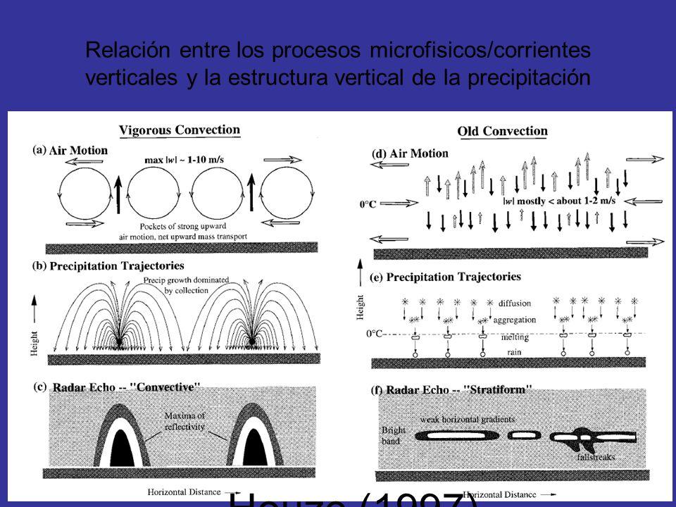 Relación entre los procesos microfisicos/corrientes verticales y la estructura vertical de la precipitación