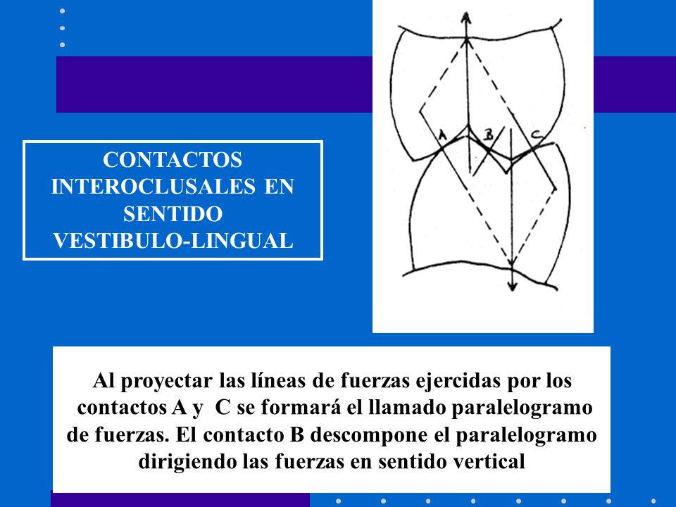 CONTACTOS INTEROCLUSALES EN SENTIDO