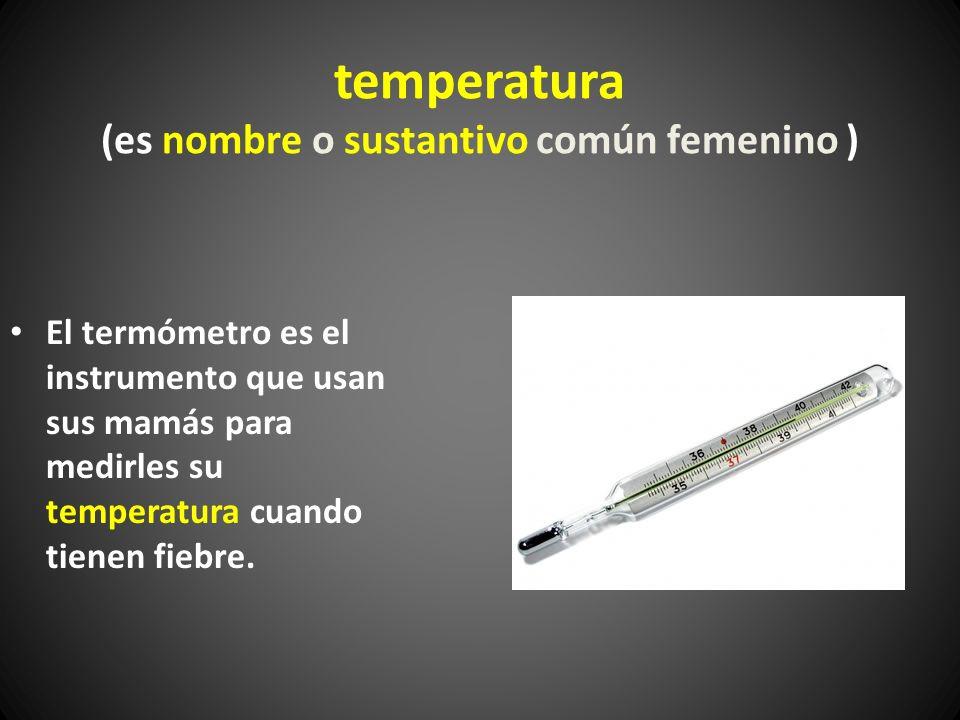 temperatura (es nombre o sustantivo común femenino )