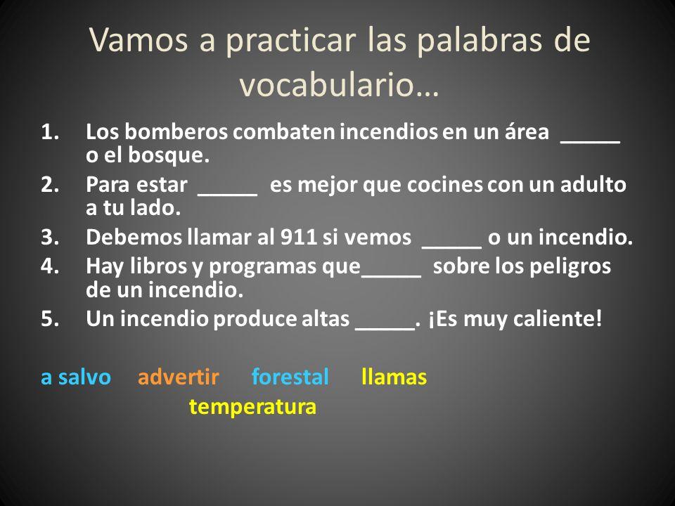 Vamos a practicar las palabras de vocabulario…