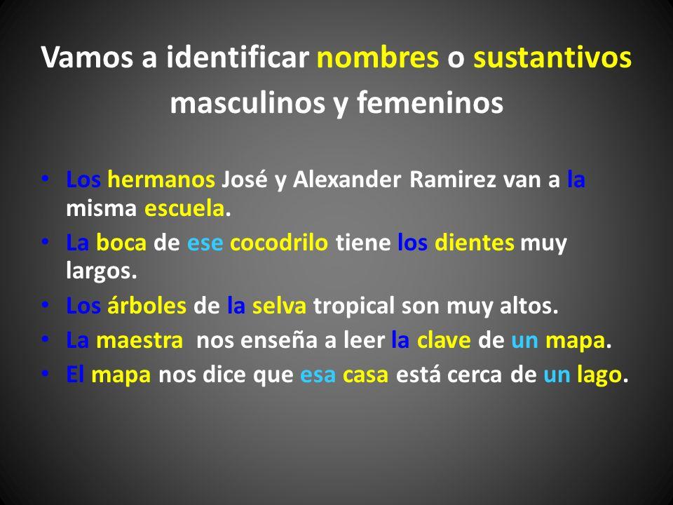 Vamos a identificar nombres o sustantivos masculinos y femeninos
