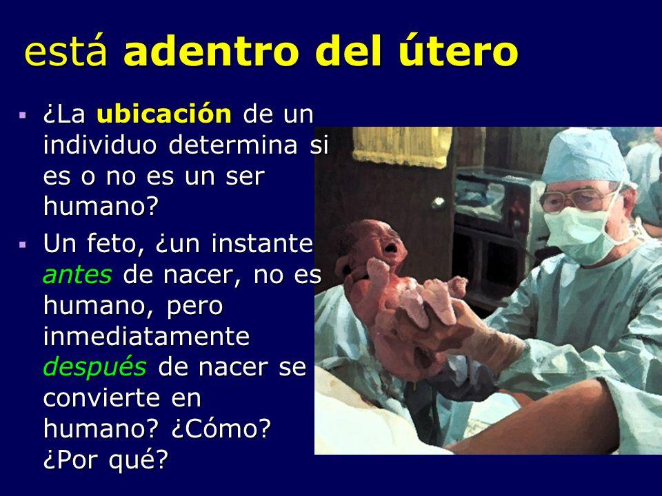 está adentro del útero ¿La ubicación de un individuo determina si es o no es un ser humano