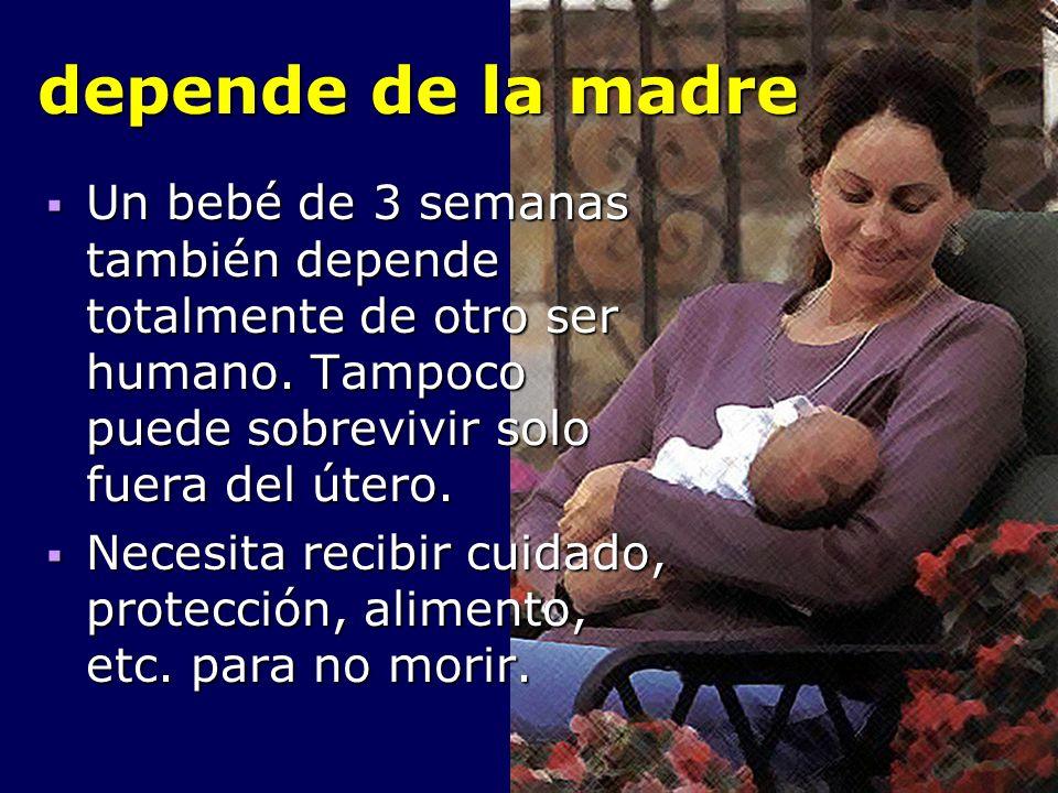 depende de la madre Un bebé de 3 semanas también depende totalmente de otro ser humano. Tampoco puede sobrevivir solo fuera del útero.