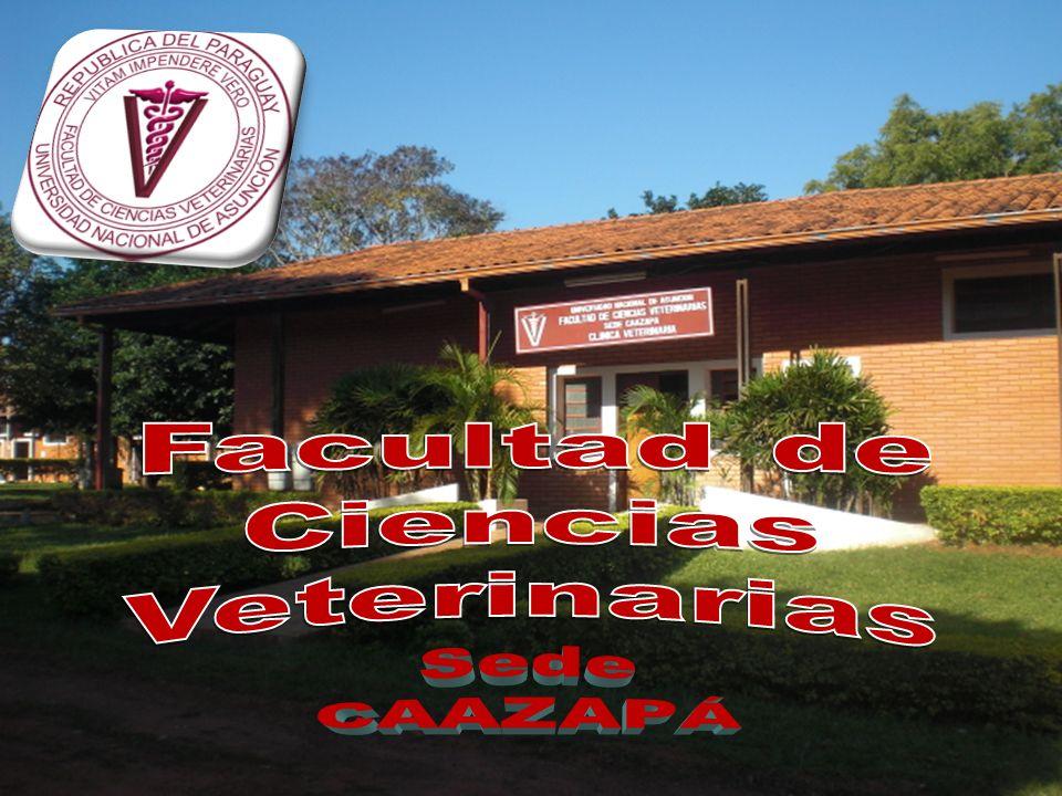 Facultad de Ciencias Veterinarias Sede CAAZAPÁ