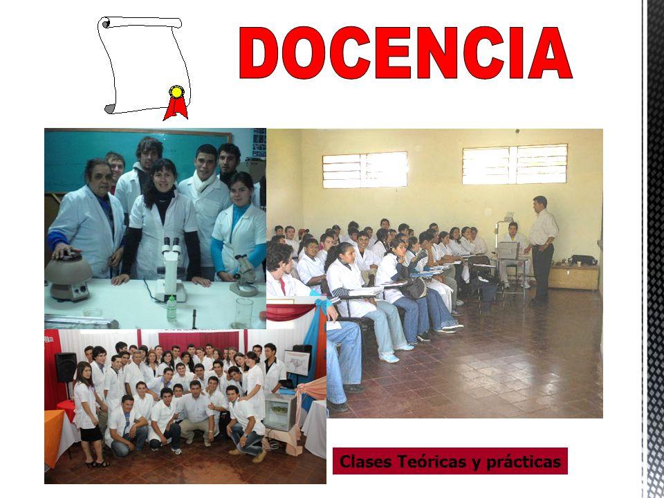 DOCENCIA Clases Teóricas y prácticas