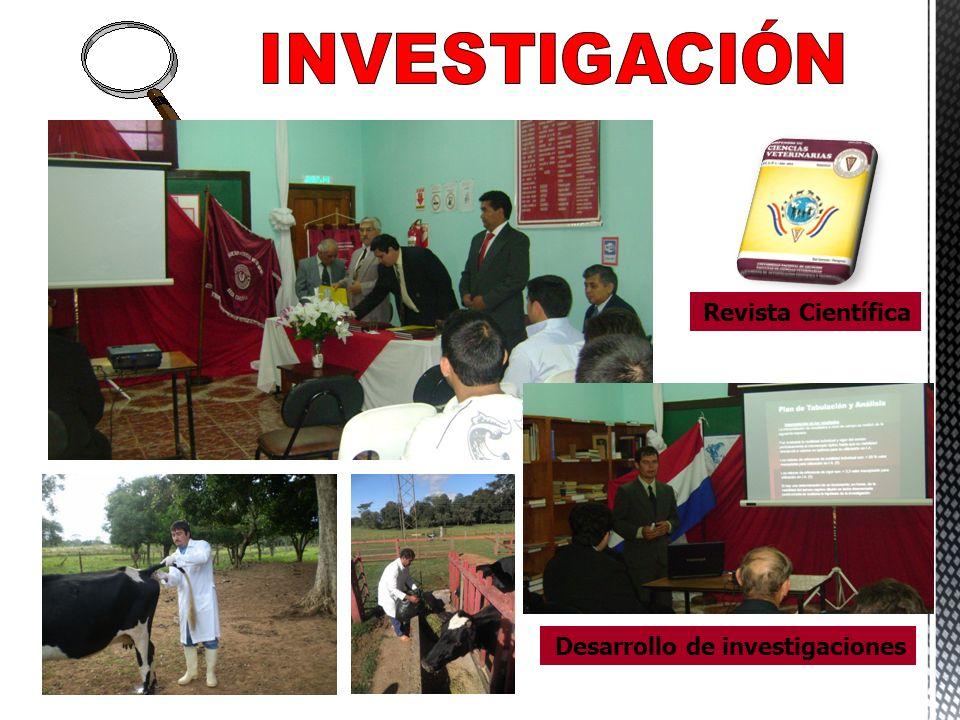 INVESTIGACIÓN Revista Científica Desarrollo de investigaciones