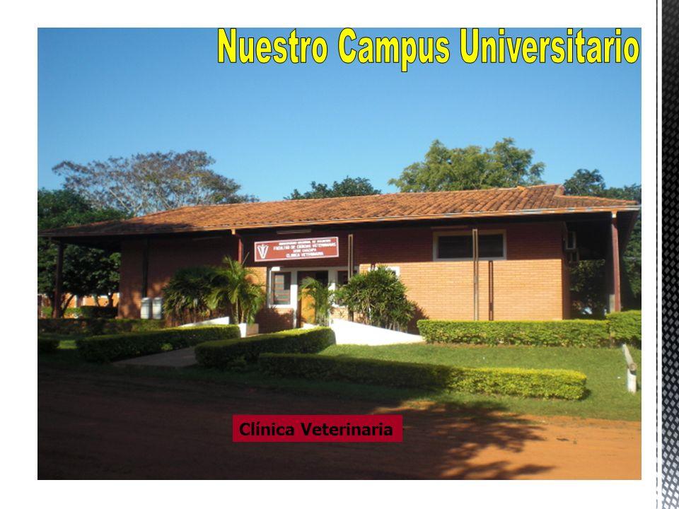 Nuestro Campus Universitario