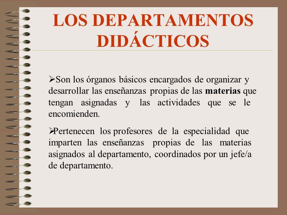 LOS DEPARTAMENTOS DIDÁCTICOS