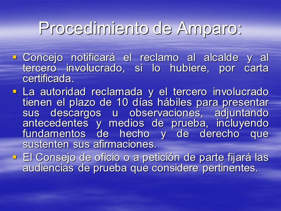 Procedimiento de Amparo: