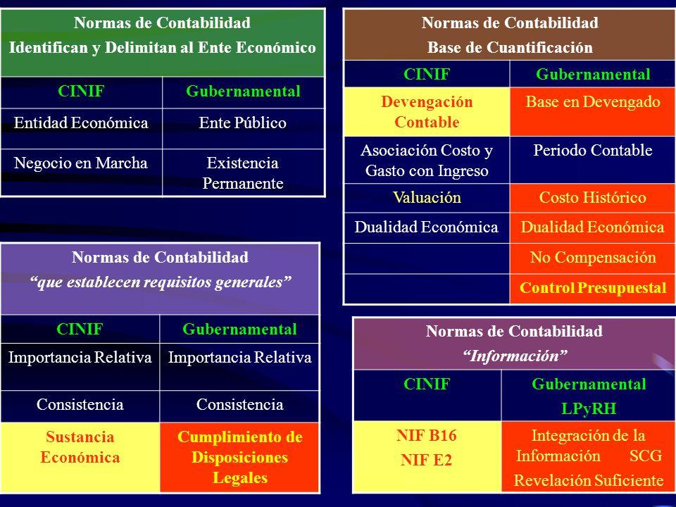 Normas de Contabilidad Identifican y Delimitan al Ente Económico CINIF