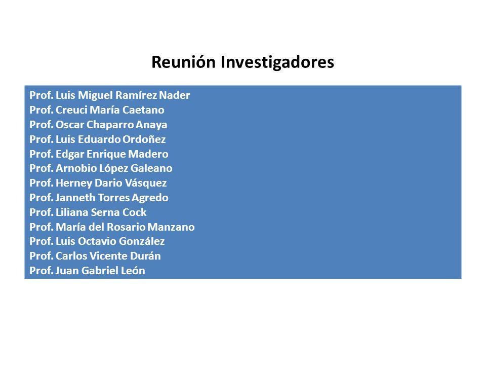 Reunión Investigadores