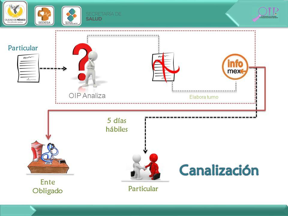 Canalización Ente obligado Particular OIP Analiza 5 días hábiles