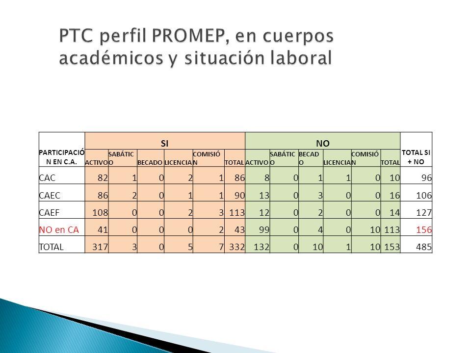 PTC perfil PROMEP, en cuerpos académicos y situación laboral