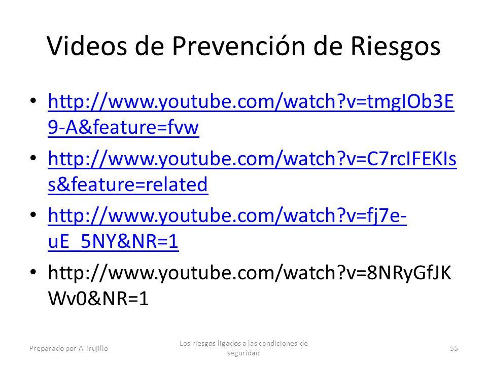 Videos de Prevención de Riesgos