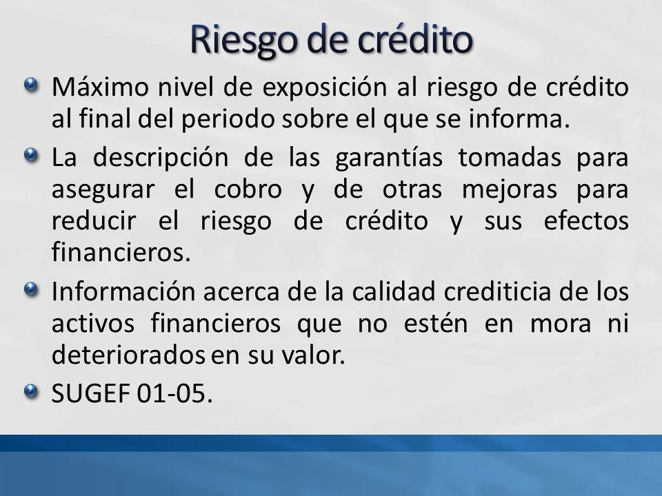 Riesgo de crédito Máximo nivel de exposición al riesgo de crédito al final del periodo sobre el que se informa.