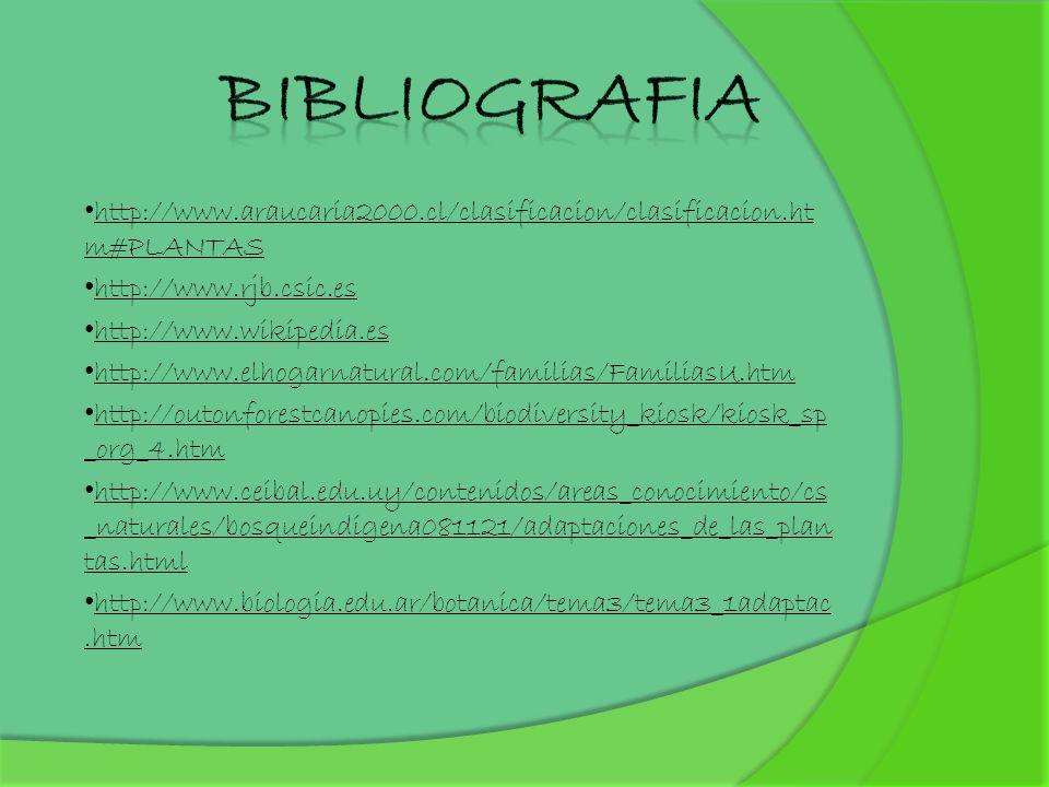 BIBLIOGRAFIA http://www.araucaria2000.cl/clasificacion/clasificacion.htm#PLANTAS. http://www.rjb.csic.es.