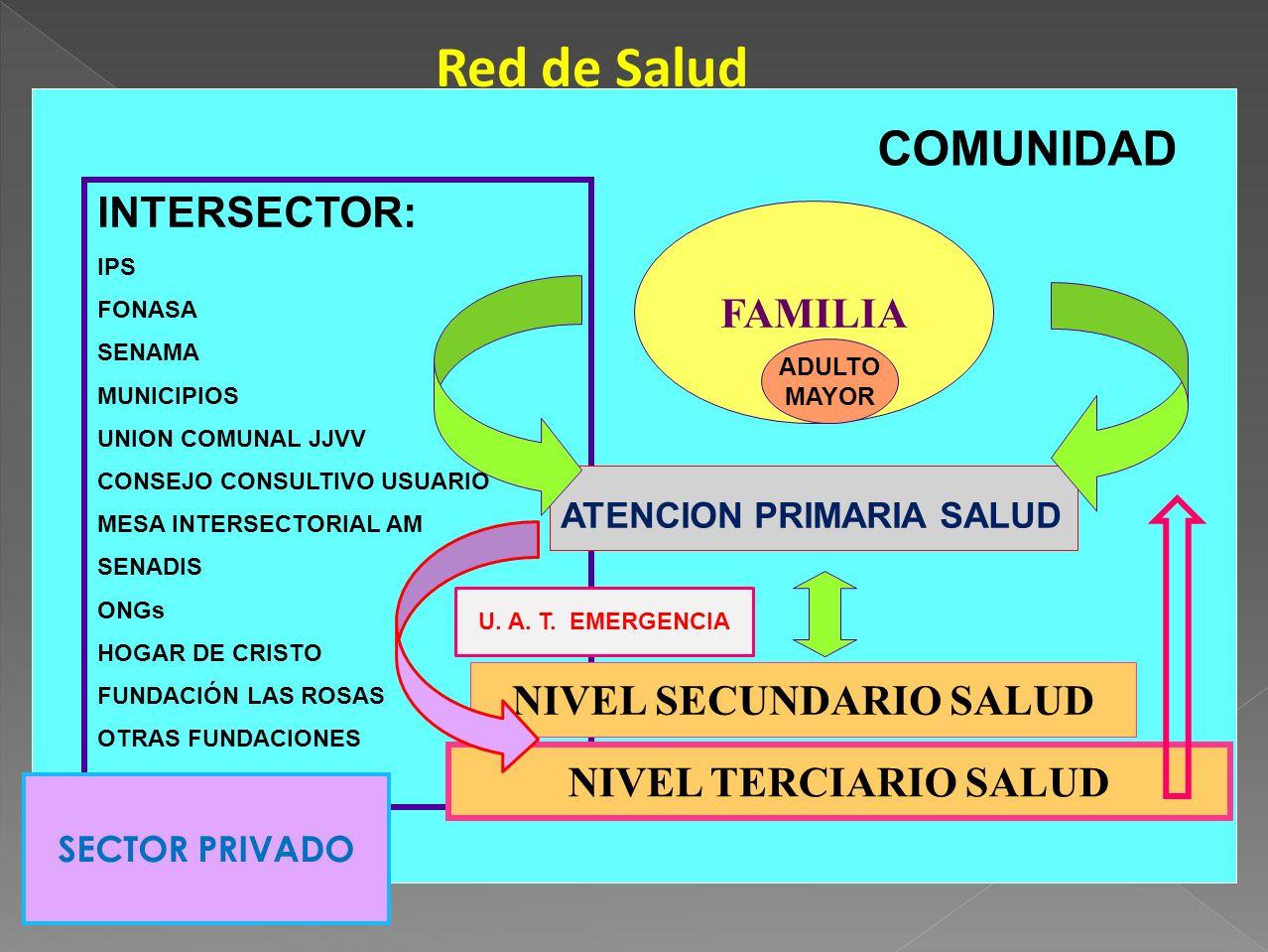 NIVEL SECUNDARIO SALUD
