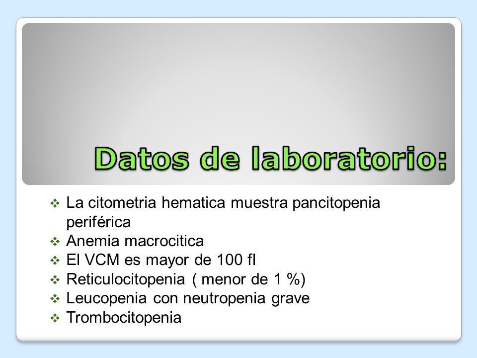 Datos de laboratorio: La citometria hematica muestra pancitopenia periférica. Anemia macrocitica. El VCM es mayor de 100 fl.
