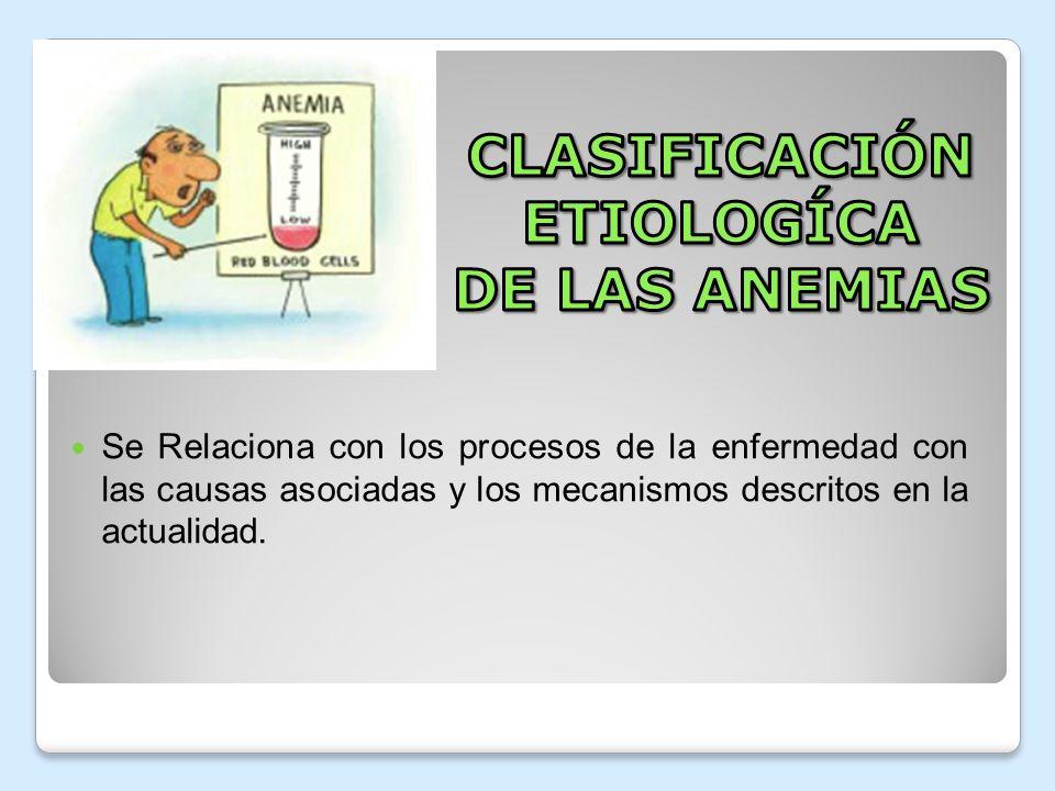 CLASIFICACIÓN ETIOLOGÍCA DE LAS ANEMIAS