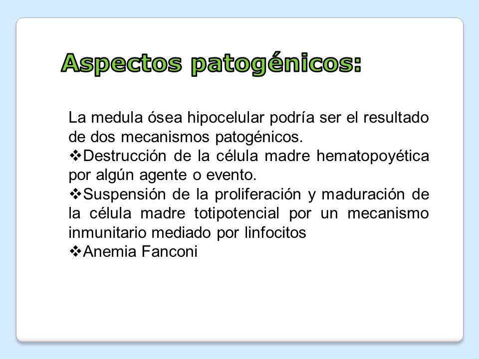 Aspectos patogénicos: