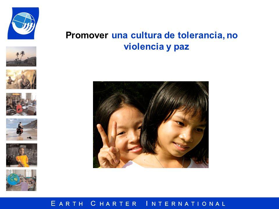 Promover una cultura de tolerancia, no violencia y paz