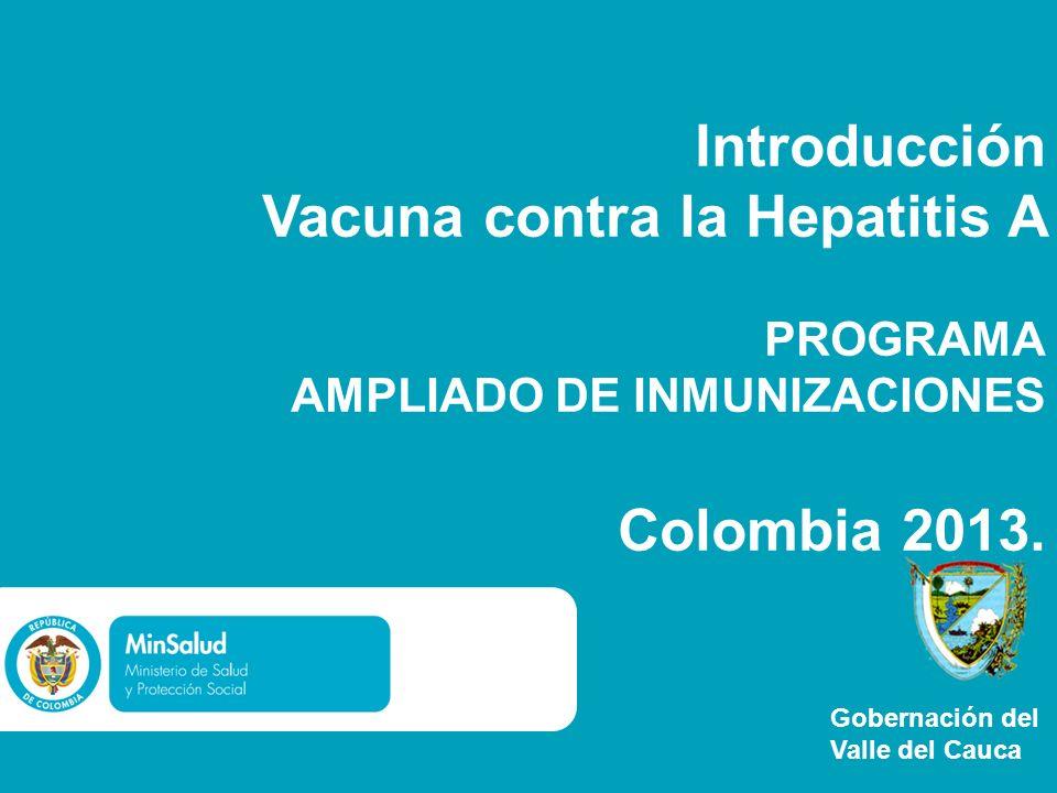 Introducción Vacuna contra la Hepatitis A PROGRAMA AMPLIADO DE INMUNIZACIONES Colombia 2013.