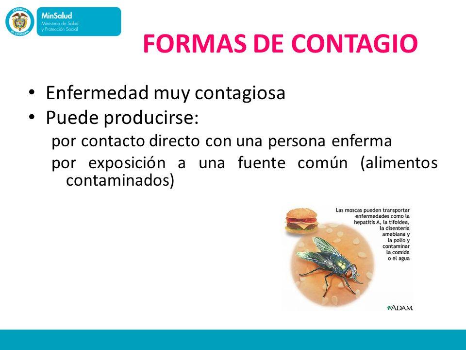 FORMAS DE CONTAGIO Enfermedad muy contagiosa Puede producirse: