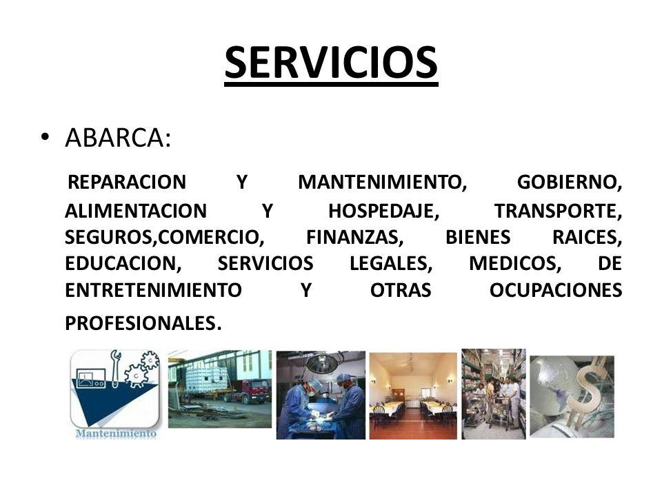 SERVICIOS ABARCA: