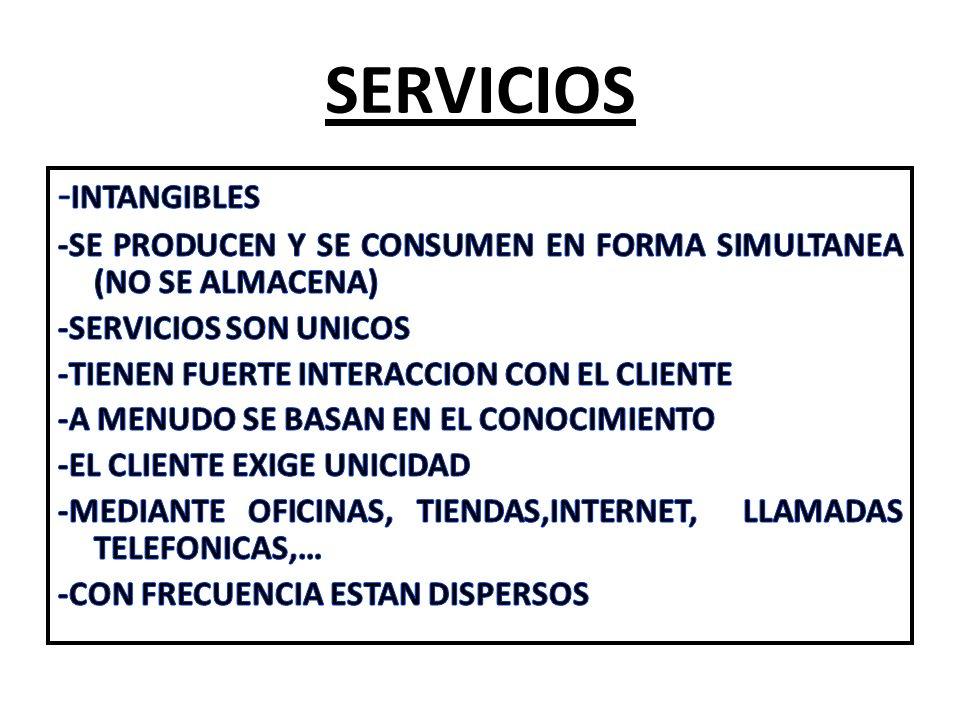 SERVICIOS -INTANGIBLES