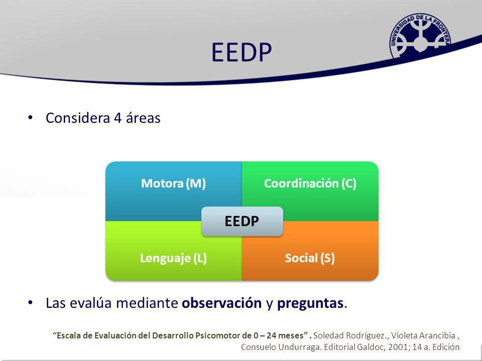 EEDP EEDP Considera 4 áreas