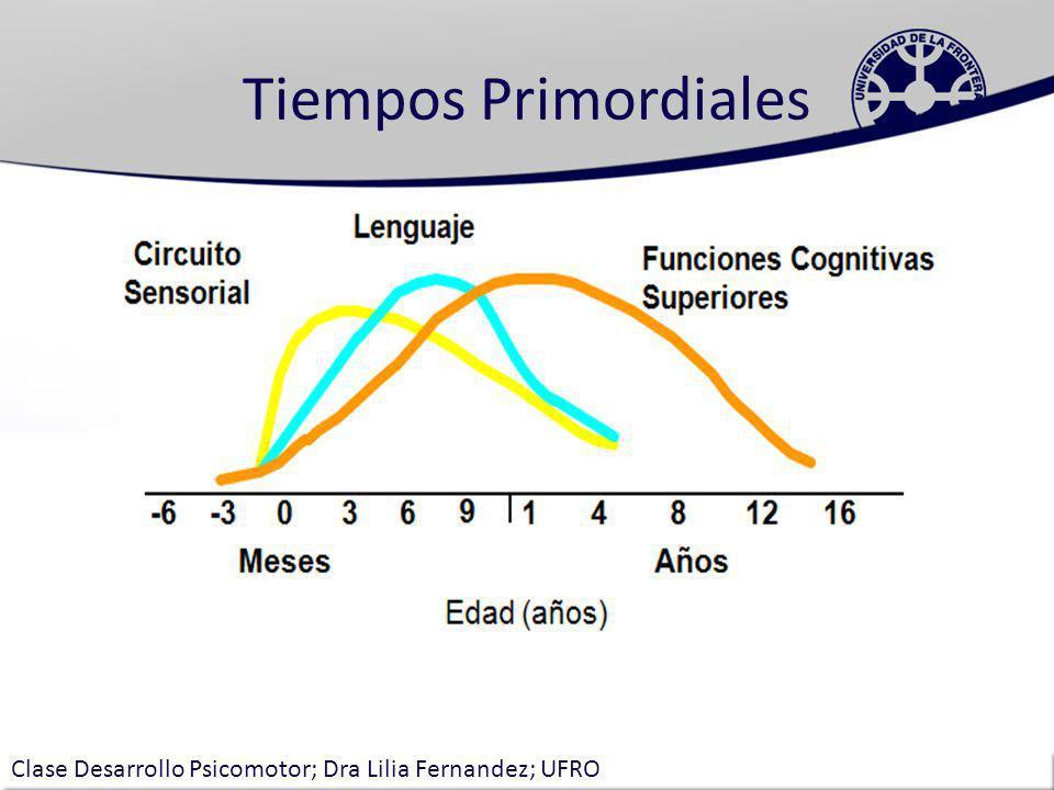 Tiempos Primordiales Clase Desarrollo Psicomotor; Dra Lilia Fernandez; UFRO
