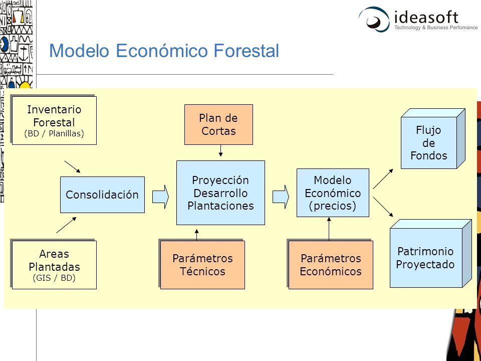 Modelo Económico Forestal