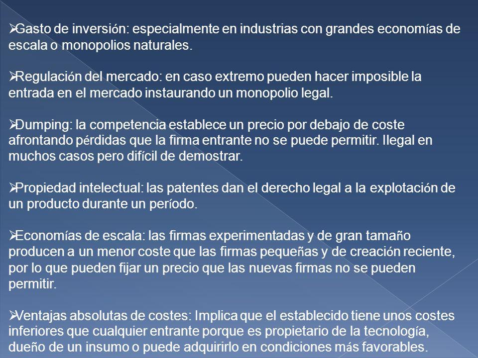 Gasto de inversión: especialmente en industrias con grandes economías de escala o monopolios naturales.