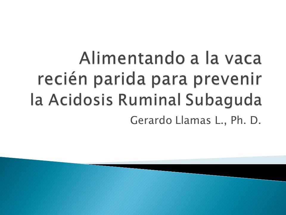 Alimentando a la vaca recién parida para prevenir la Acidosis Ruminal Subaguda