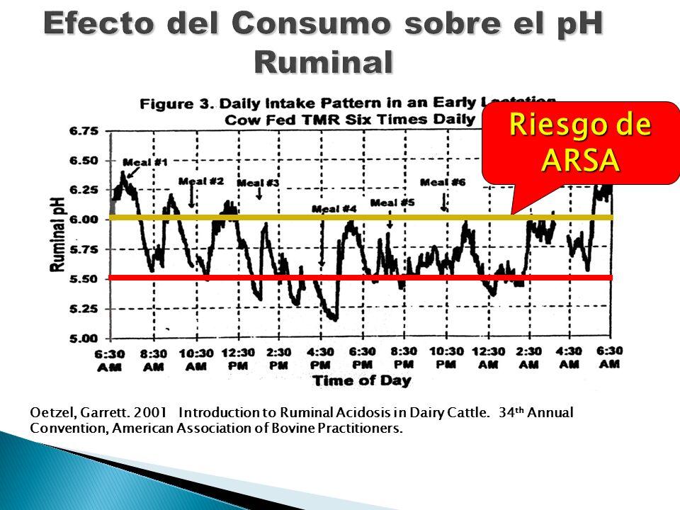 Efecto del Consumo sobre el pH Ruminal