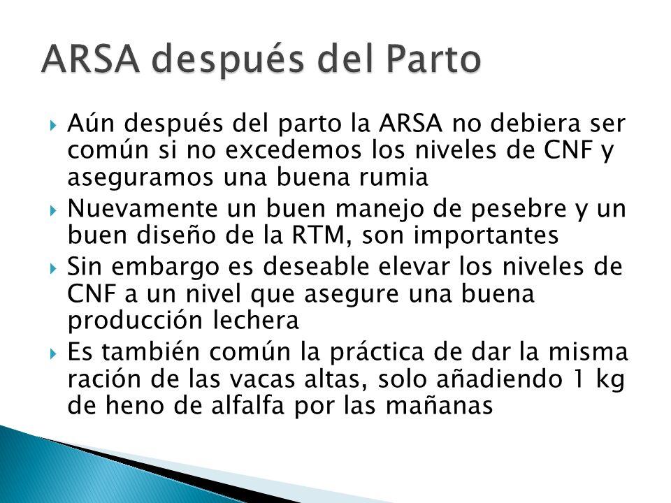 ARSA después del Parto Aún después del parto la ARSA no debiera ser común si no excedemos los niveles de CNF y aseguramos una buena rumia.